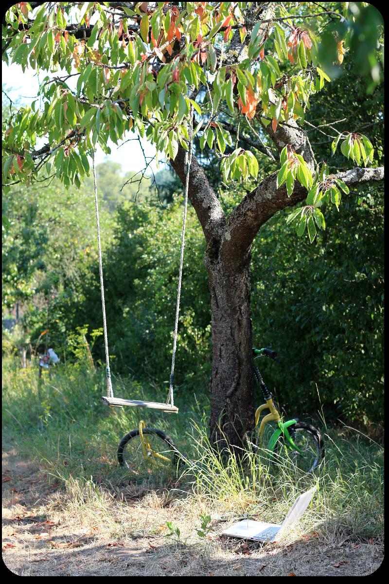 Schaukeln im Kirschbaum... | Arthurs Tochter Kocht by Astrid Paul