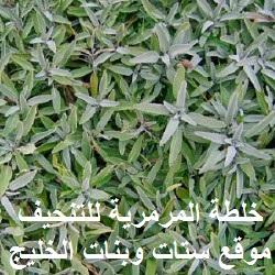 setatwebanat.blogspot.com