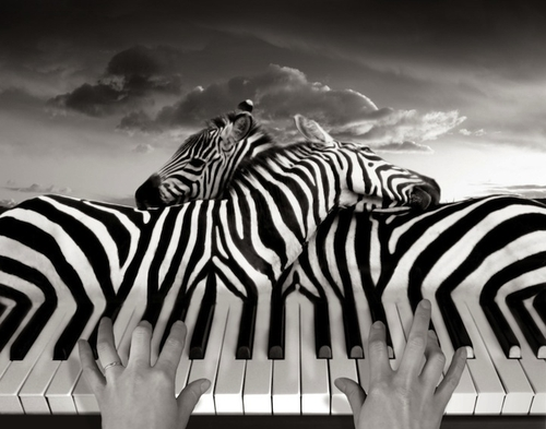 03-Piano-Peace-Swiss-Photographer-Photo-Montage-Surreal-Thomas-Barbèy-Designer-Recording-Artist-Lyricist-Fashion