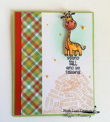 North Coast Creations Stamps & Dies: Go Wild, ODBD Paper Collection: Birthday Brights