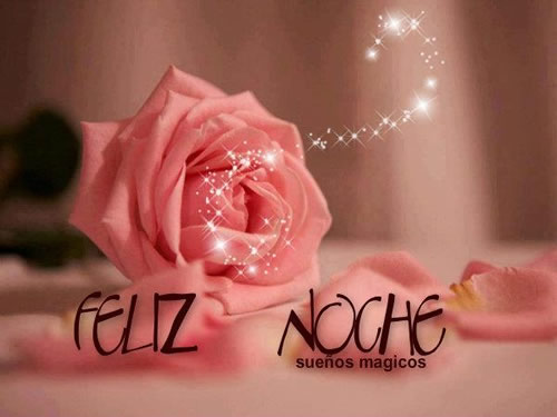 rosa con destellos Feliz Noche