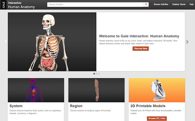 Interactive : Human Anatomy