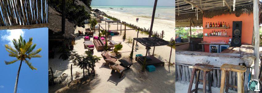 Zanzibar a luglio: in paradiso per un giorno - Gli scrittori della porta accanto, Viaggi