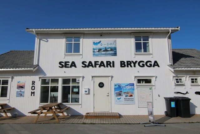 Sea Safari Andenes en Noruega