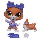 Littlest Pet Shop Pet Pairs Buster Howe (#3769) Pet