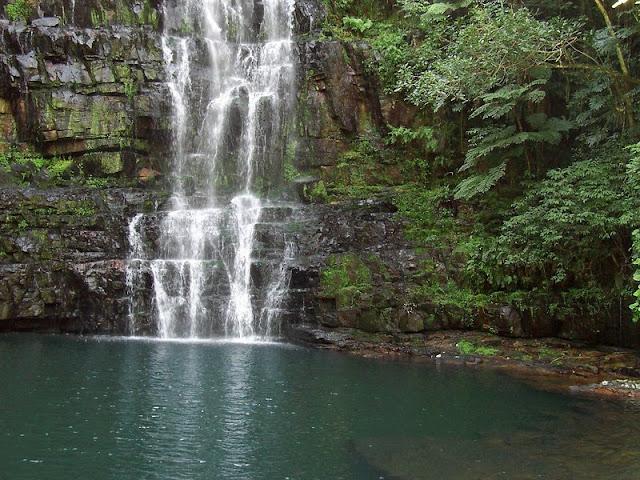 www.viajesyturismo.com.co 800 x 600