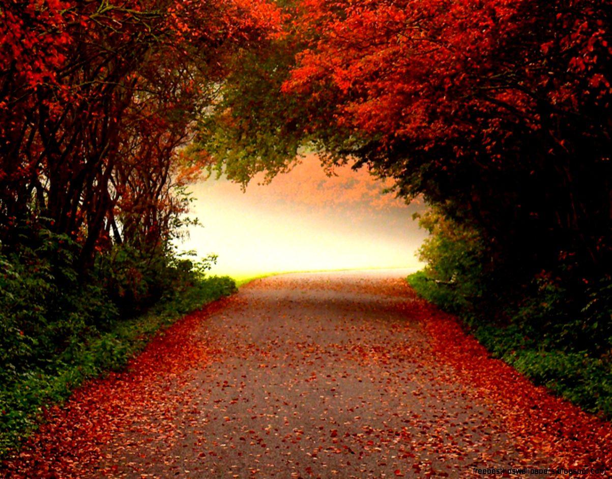 Autumn Desktop Wallpaper Downloads