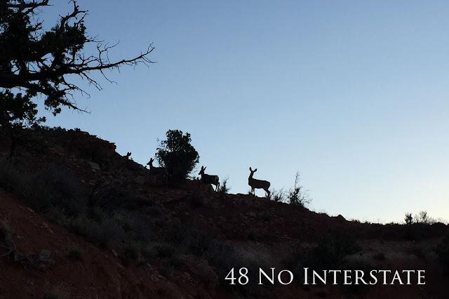 48 No Interstate back roads cross country coast-to-coast road trip deer silhouette Kanab Utah