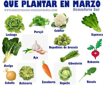 Qué plantar en Marzo