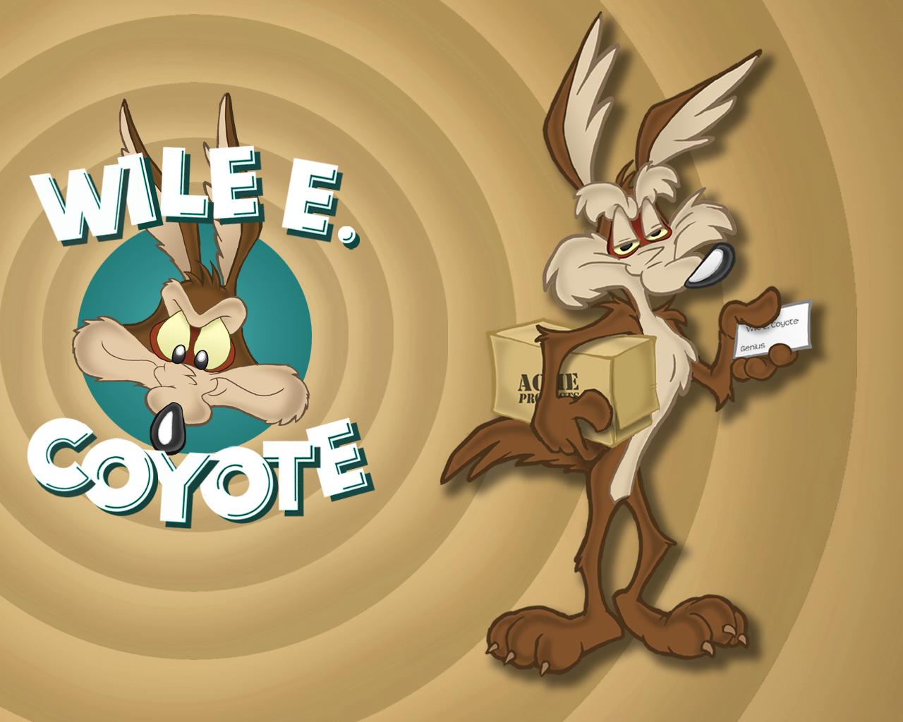 wile e coyote acme
