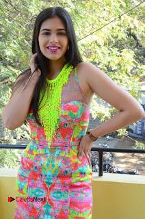 Telugu Actress Prasanna Stills in Short Dress at Inkenti Nuvve Cheppu Press Meet Stills  0096.JPG