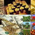 COMMODITY MORNING TREND NEWS