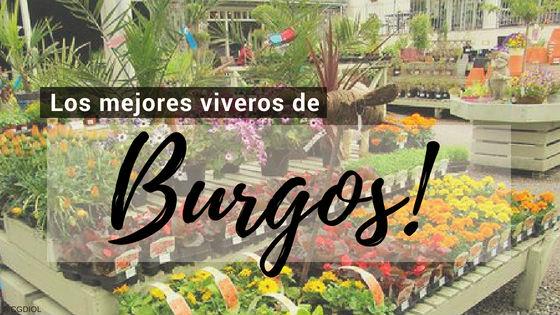 Listado de los Mejores Viveros de la Provincia de Burgos, España, donde puedes comprar plantas para tus proyectos