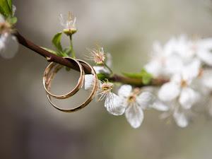 ¡Aprende a escoger el mejor anillo de compromiso!