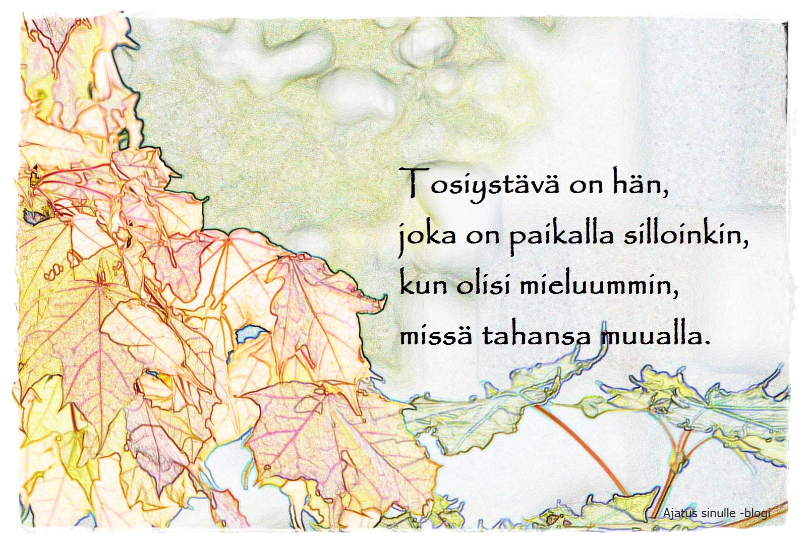 aforismi elämästä alastonsuomi.org