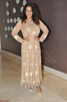 Mumaith Khan in Beig Skin Colored Anarkali Dress at Kalamandir Foundation 7th anniversary Celebrations ~  Actress Galleries 004.JPG