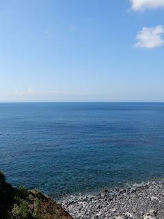 伊豆大島の旅