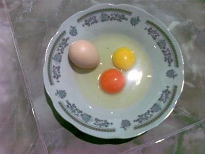 Telur Ayam Kampung Arab dengan atau tanpa XANTA RED