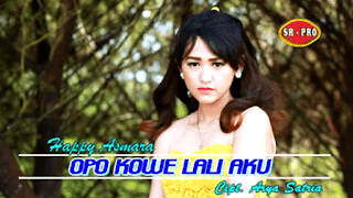 Lirik Lagu Opo Kowe Lali Aku - Happy Asmara