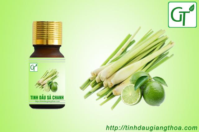 Tinh dầu Sả Chanh nguyên chất (Lemon Grass Oil)