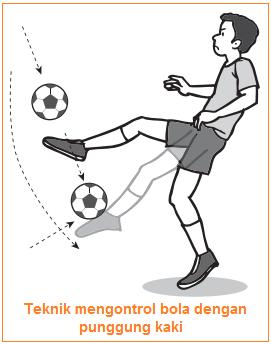 Gambar illustrasi Teknik mengontrol bola dengan punggung kaki