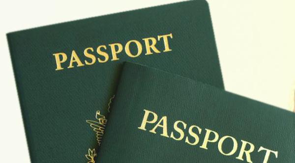 Nigerian Immigration Passport Application Form