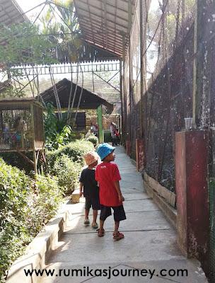 keliling jurug solo zoo
