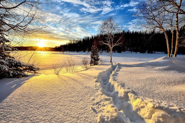 Hiver-soleil-froid-chaleur-pleine conscience