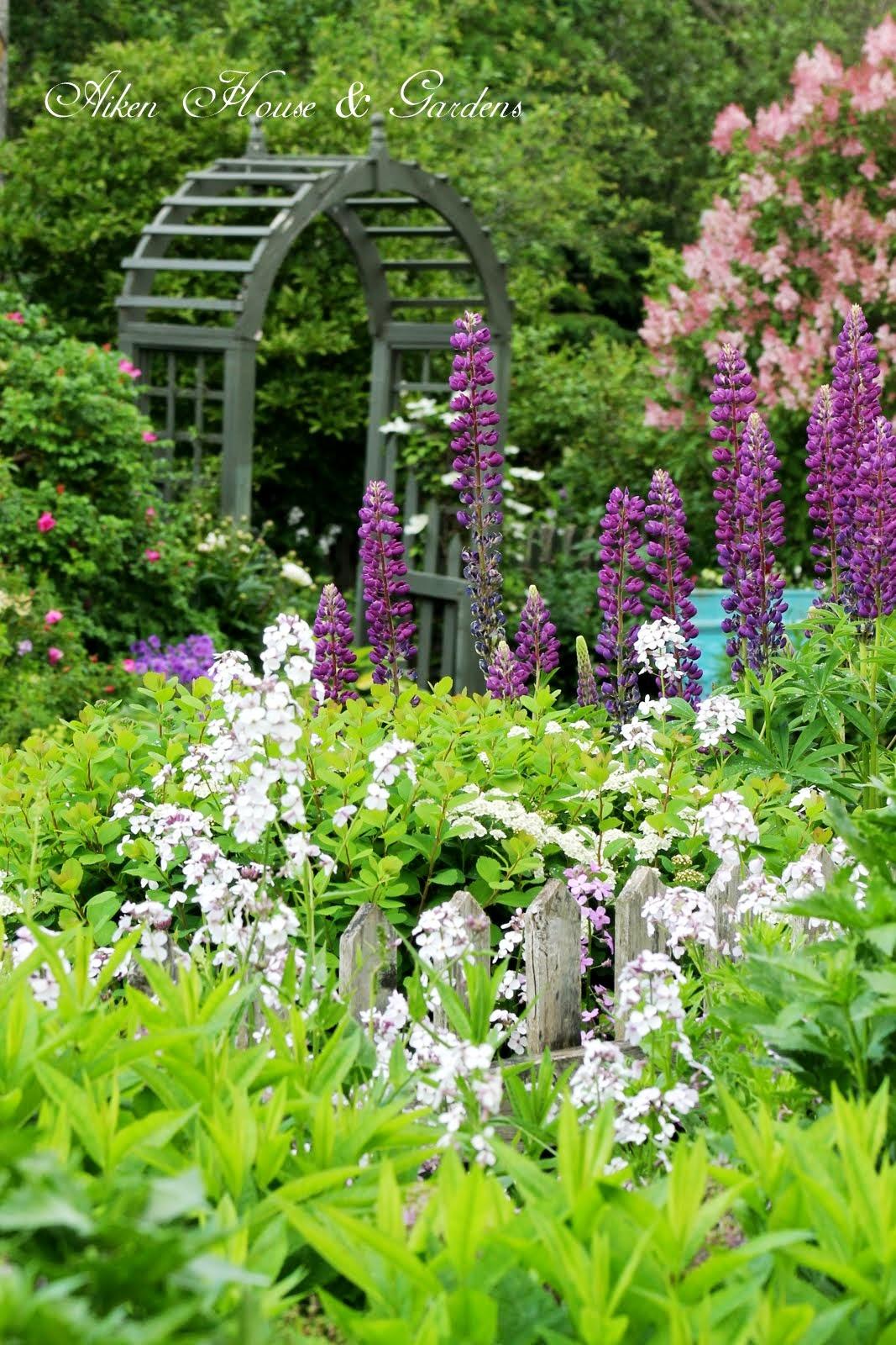 Aiken House Gardens Amp