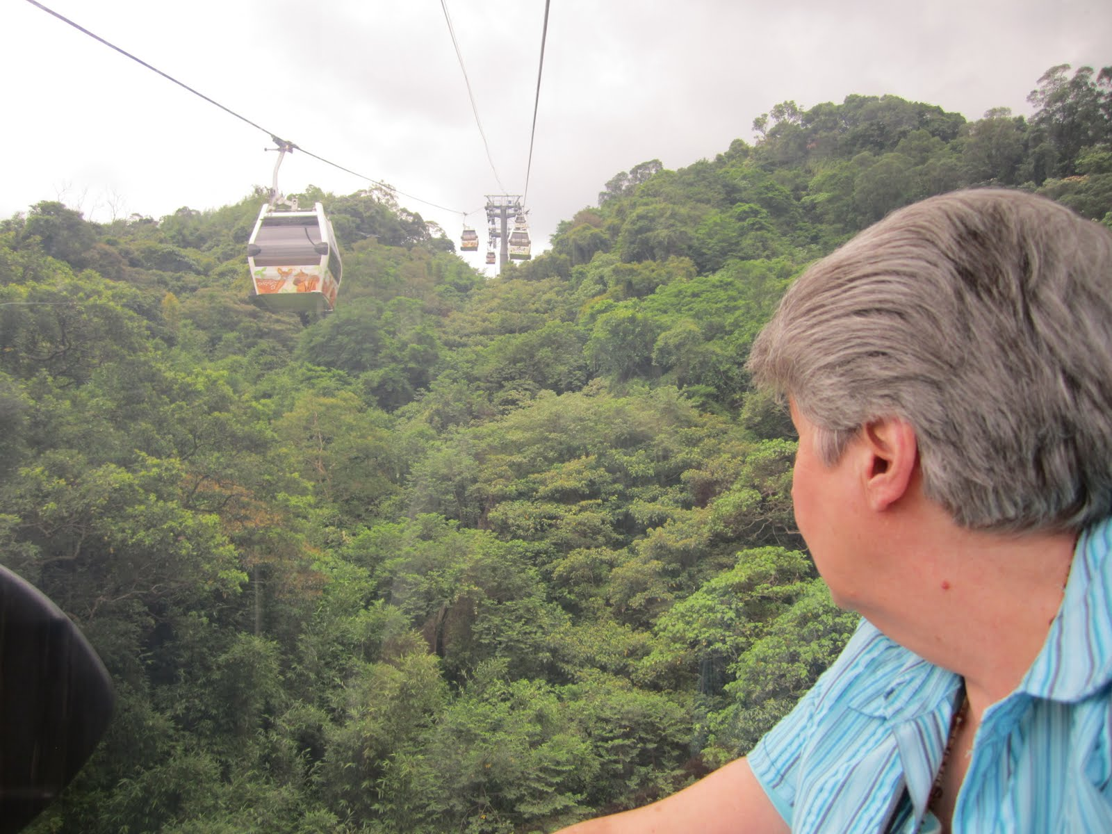 Our Travel Journal: The Maokong Gondola, and rain, and a