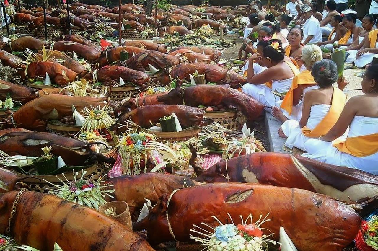 babi guling untuk upacara