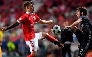 Benfica Futebol Grimaldo