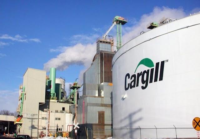 Resultado de imagem para mercado de biodiesel noticias trecho