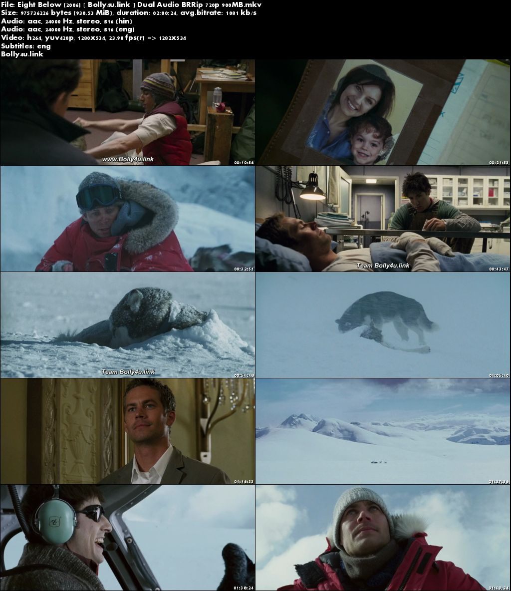 Eight Below 2006 BRRip 350MB Hindi Dual Audio ORG 480p Download
