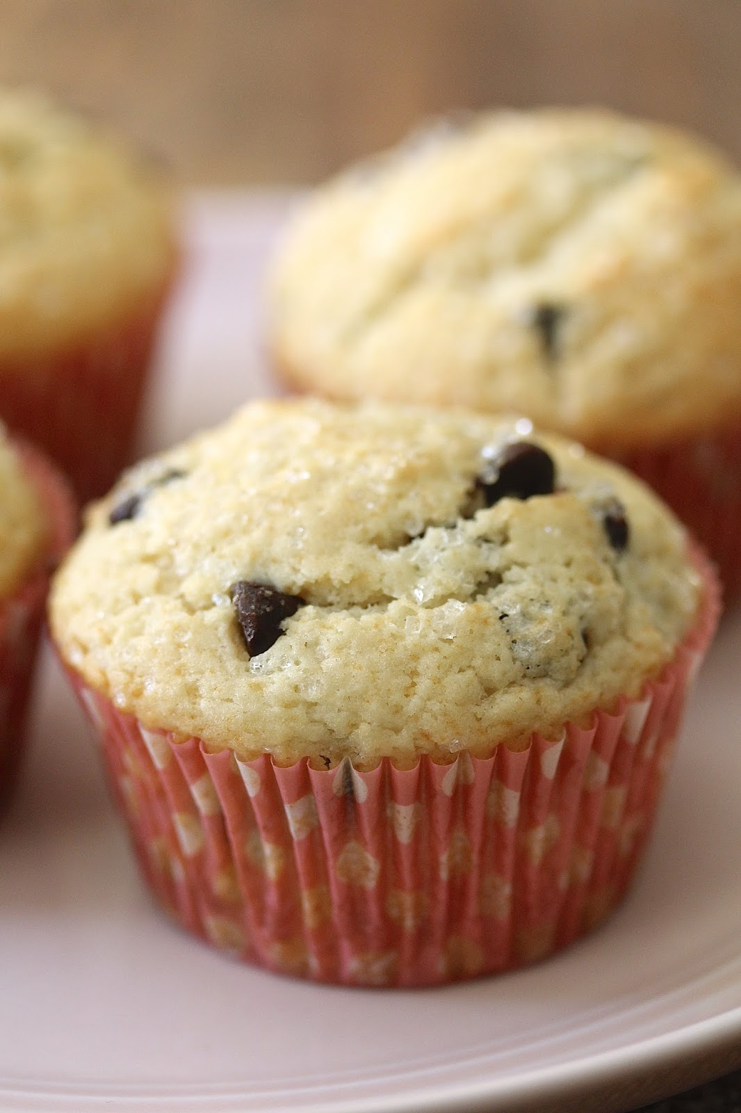 Chocolate Chip Muffins Without Baking Powder
