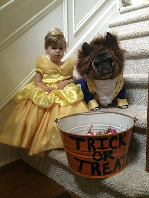 Beauty and The Beast Little Girl and Dog Halloween Costume