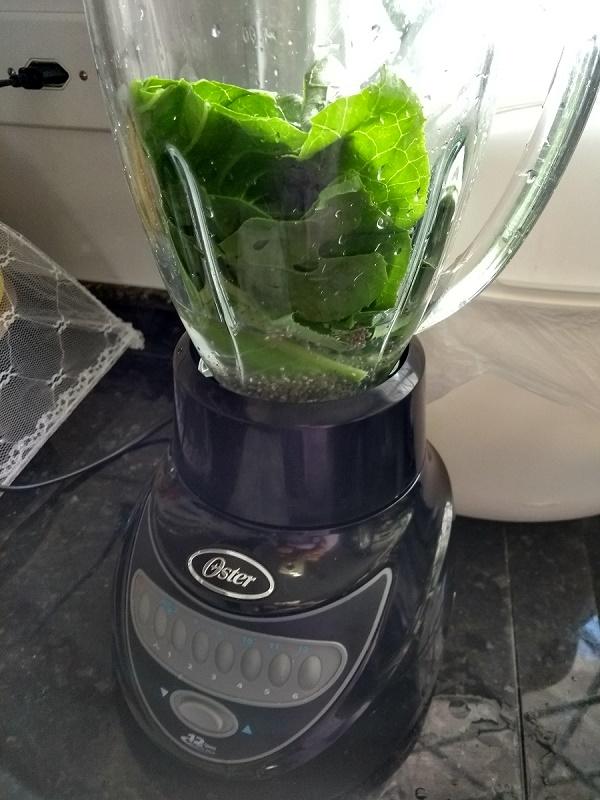 suco verde no liquidificador