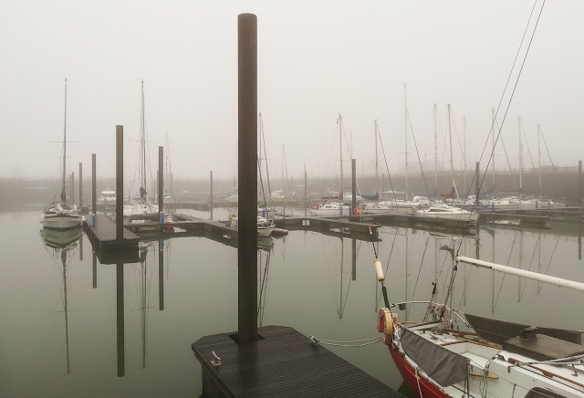 Photo of the misty view from our aft deck this afternoon (Friday)