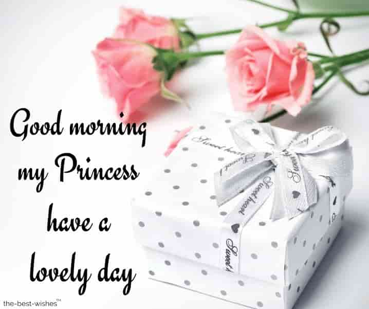 good morning my lovely princess