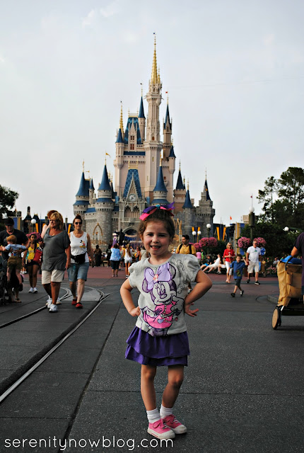 Picture in front of Magic Kingdom Castle, Serenity Now blog