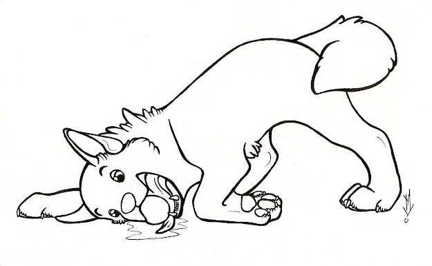 Dog Coloring Pages Breeds Bones And Dog Houses