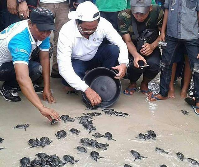 Festival Padang melang