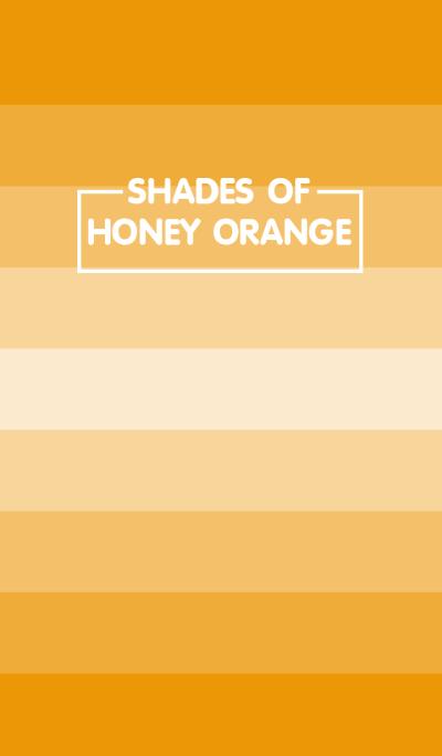 Shades Of Honey Orange