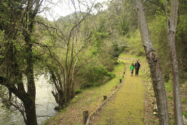 Senda Fluvial Del Rio Deva La Hermida Cantabria Excursiones Y