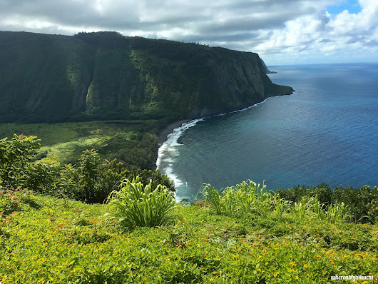 Hiking Waipi'o Valley: Journey to the Valley of the Kings