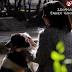 Πρωταγωνίστρια σε σποτ Ζωοφιλικής Ένωσης η Τόνια Σωτηροπούλου (video)