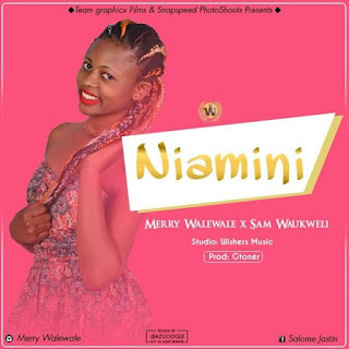 Merry WaleWale ft. Sam Waukwel - Niamini.