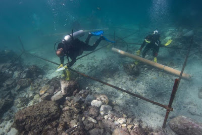 500-year-old Portuguese shipwreck found off Oman