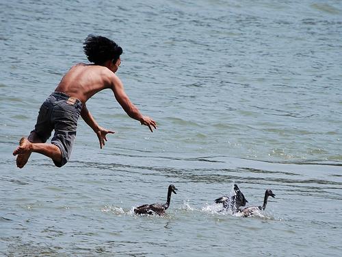 Lomba Tangkap Bebek Meriahkan Sabang Marine Festival
