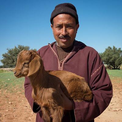 El pastor y su cabra en Essaouira